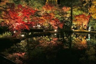 曽木公園3.JPG