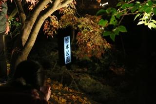 曽木公園4.JPG